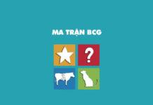 Ma trận BCG là gì